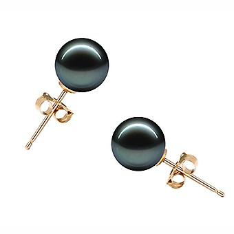 Original McPearl pearls Akoya earrings 7 - 7.5 mm in sw, qualit il thuringia..