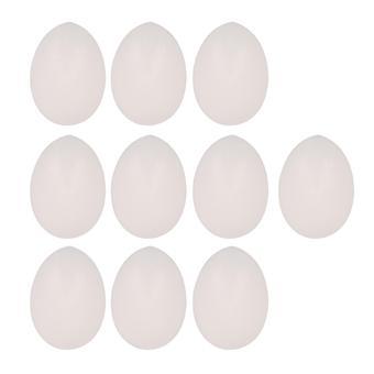 鳥のおもちゃは、マジシャン10個の白のためのプロップギャグダミー卵ダミー卵の鳥