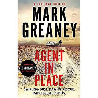 Agent in Place (grijze Man)