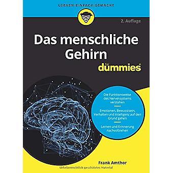Das menschliche Gehirn fur Dummies by Frank Amthor - 9783527716227 Bo