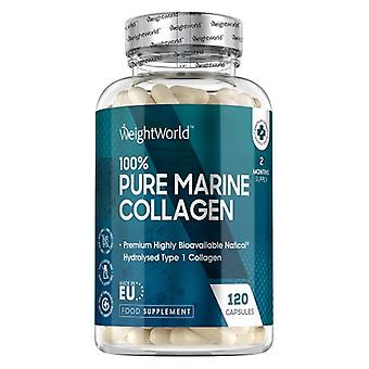 Pure Marine Collagen 1170 mg 120 Capsules. High-Potency Supplement