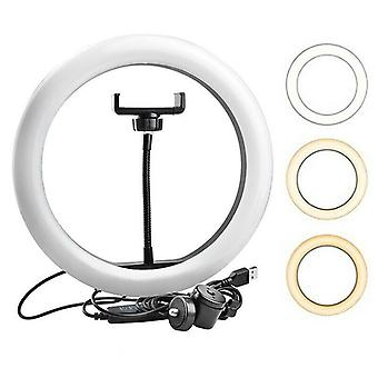 "10 "" LED Ring Light Dimmable Lighting Kit Téléphone Selfie Trépied Maquillage Live Lampe"