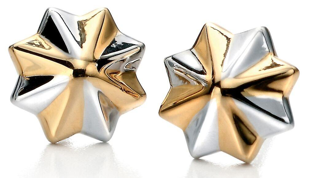 925 Silver Gold Plated Star Earring