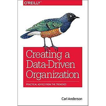 Luominen Data Driven Organization Carl Anderson - 9781491916919