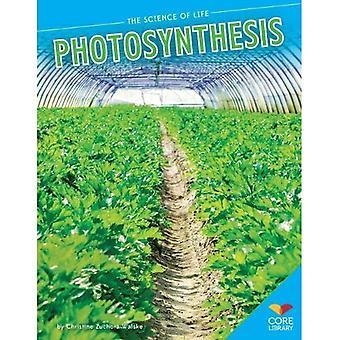 Fotosynthese (wetenschap van het leven)