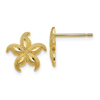 14 Gold Polished and Textured Starfish Post Earrings