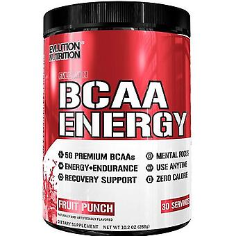 Evlution Nutrition Bcaa Energy Blueberry Mojito 291 g