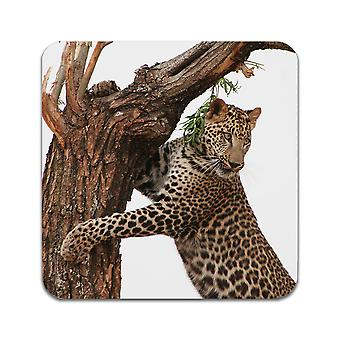 2 ST Leopard Coasters