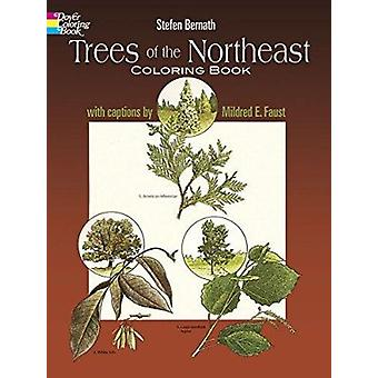 Trees of the Northeast Coloring Book by Stefen Bernath - 978048623734