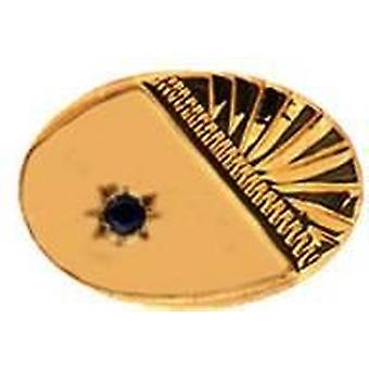 דוד ואן הייגן ספיר 9ct עניבה-זהב