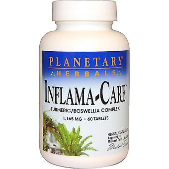 Planetary Herbals, Inflama-Pflege, 1.165 mg, 60 Tabletten