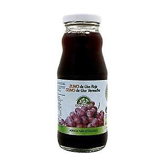 Black Grape Juice Eco 200 ml