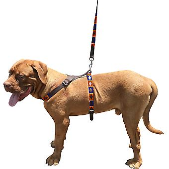Carlos diaz genuine leather waxed embroidered polo dog matching easy control no pull back harness and lead set cdbh5