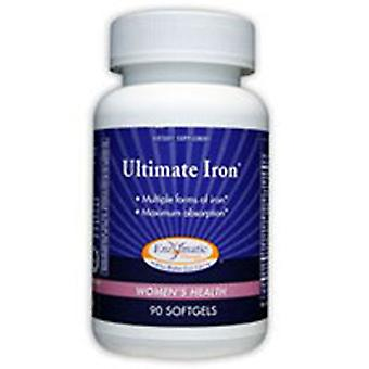 Enzymatic Therapy Ultimate Iron, 90 Softgel