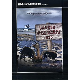 Gemme Pelican 895 [DVD] USA import