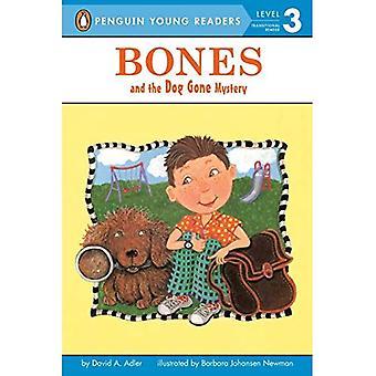 Bein og hunden gått Mystery (Bones (Lunde lett-å-lese))