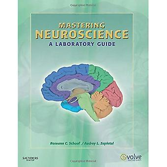 Mastering Neuroscience: A Laboratory Guide