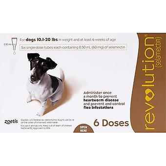 Revolution For Dogs 10-20lbs (5-10kg) - 6 Pack