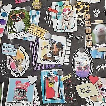 Dieren frames Selfies behang zwart varken hond kat Holden decor geboren om wild te zijn