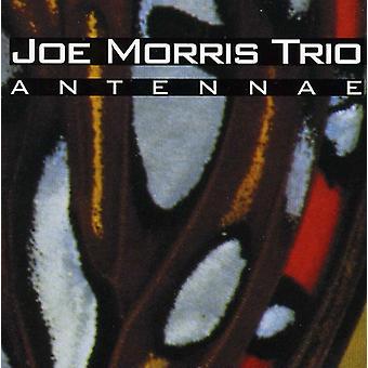 ジョー ・ モリス トリオ - アンテナ [CD] USA 輸入
