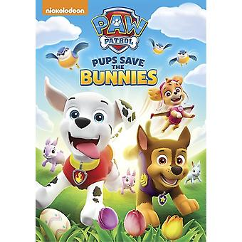 Paw Patrol: Spring Into Action [DVD] USA import
