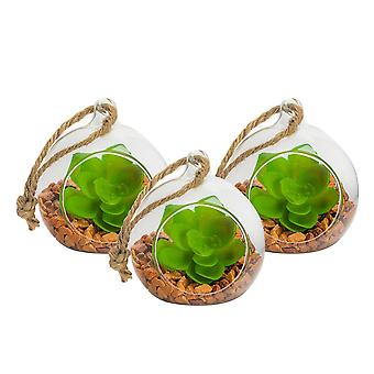 Nicola Spring Glass Plant Terrarium Set for Succulent Plants Ferns Cactus - Tabletop or Hanging Display - 80mm - Pack of 3