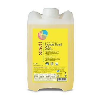 Color liquid detergent 5 L