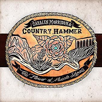 Cahalen Morrison & Country Hammer - Flower of Muscle Shoals [Vinyl] USA import