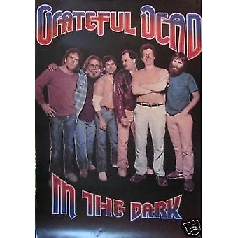 Grateful Dead In the Dark Poster