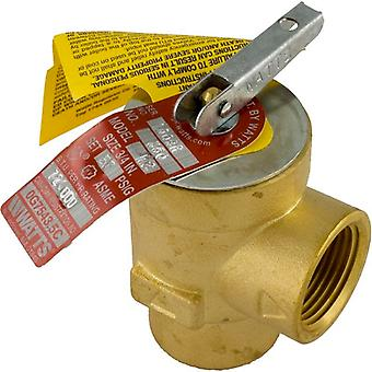 Pentair 473715Z Pressure Relief Valve Max-E-Therm