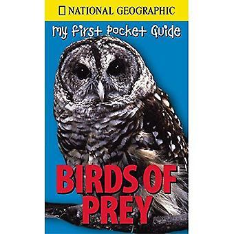 Birds Of Prey (National Geographic meine erste Pocket-Guides)