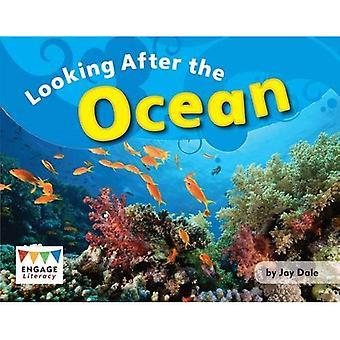 Leter etter havet (engasjere Literacy blå)
