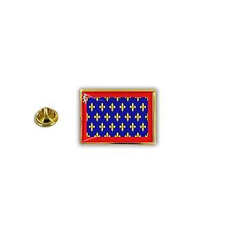 Pine PineS badge PIN-apos; s metalen epoxy met vlinder borstel vlag Frankrijk Maine