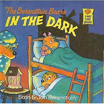 Os ursos de Berenstain no escuro