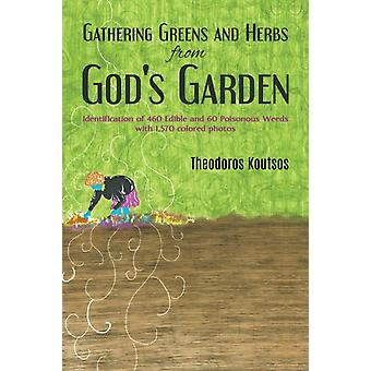 Gathering Greens and Herbs from Gods Garden  Identification of 460 Edible and 60 Poisonous Weeds with 1570 colored photos by Theodoros Koutsos