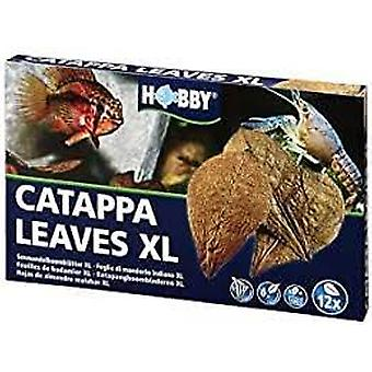 Hobby Xl Catappa Leaves 12 Pieces (Fish , Maintenance , Disease Control)