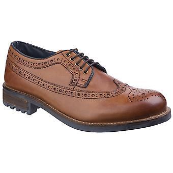 Cotswold Mens Poplar Brogue Dress Shoe