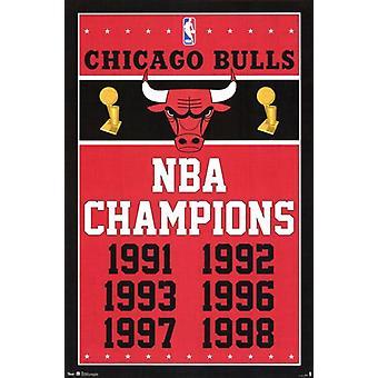 Chicago Bulls - Mestarien 2013 juliste Juliste Tulosta