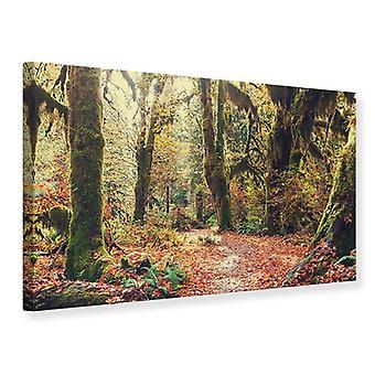 Canvas tulosta keijut Forest