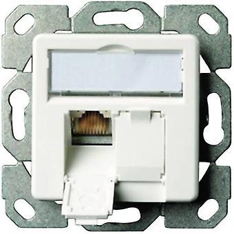 Telegärtner Network Outlet Flush mount Einsatz mit Hauptpanel CAT 6A 2 Ports Alpine weiß
