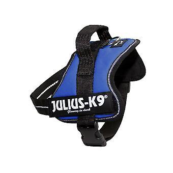 Julius K9 Powerharness babyblau