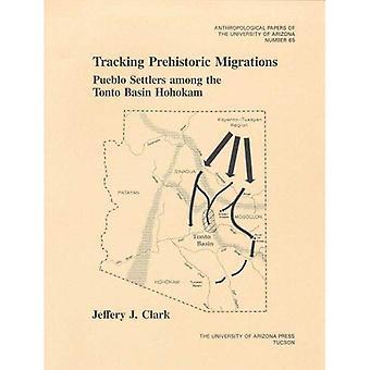 Tracking Prehistoric Migrations: Pueblo Settlers among the Tonto Basin Hohokam