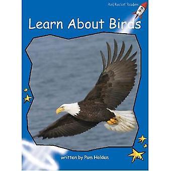 Red Rocket Readers - Early Level 3 Non-Fiction Set C - Learn About Bird