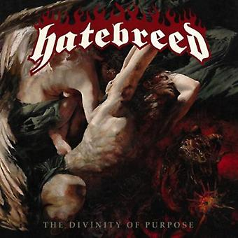 Hatebreed - Divinity of Purpose [CD] USA import