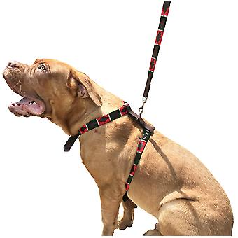 Carlos diaz genuine leather waxed embroidered polo dog matching easy control no pull harness and lead set cdsh5