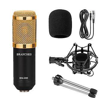 Profesionální sada kondenzátorových mikrofonů