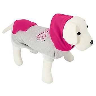 Nayeco Gloss sweatshirt Bone (Dogs , Dog Clothes , Sweaters and hoodies)