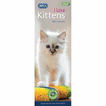 Otter House Kittens Jag älskar Rspca (pfp) Slim Kalender 2022
