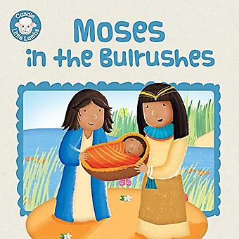 Moses in the Bulrushes (Candle Little Lambs)