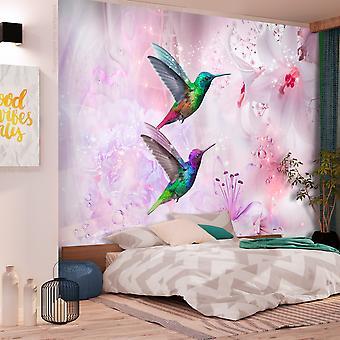Fototapet - Colourful Hummingbirds (Purple)